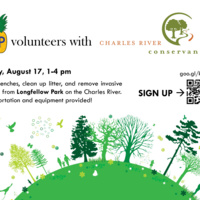 Volunteering with Charles River Conservancy