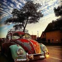 Bugstock 4: VW's Galore!
