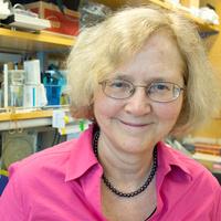 Welcome and Celebrate Dr. Elizabeth Blackburn's Return to UCSF