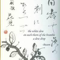 how do you write a haiku