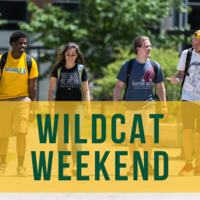 Wildcat Weekend