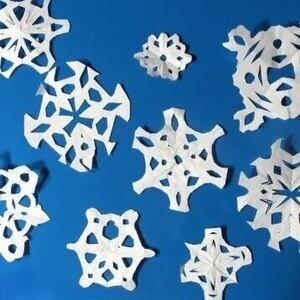S.T.E.M. Snowflakes