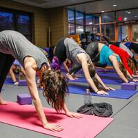 YogaFit LEVEL ONE: Foundations Instructor Training