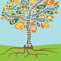 SKILLSHOP Mindfulness & Meditation: Pathways to Care & Compassion
