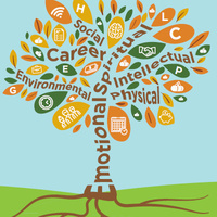 Skillshop: 7 Strategies to Discover Your Career