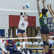 USI Women's Volleyball vs  Quincy University