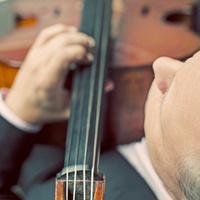 Arianna String Quartet: Shifting Vistas