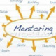 Executive Fellows Mentoring Project - Bayard Clark, PhD