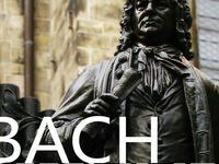 J. S Bach: Cantata Series