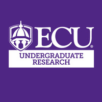 Undergraduate Research Meet and Greet