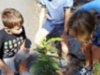 4-H Junior Naturalist Club