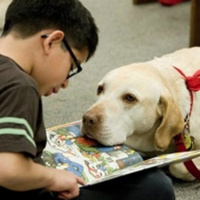 PAWS to Read with Sprite's Hero Therapy dogs