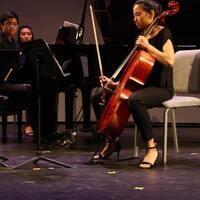 Chamber Music Ensembles Program