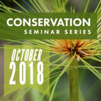 Conservation Seminar: Elizabeth Kramer