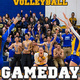 Women's Volleyball vs. Wellesley