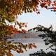 Fall Foliage Bike Ride