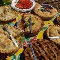 Fall Harvest Festival on the UCSC Farm