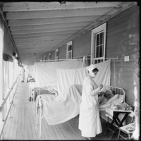 The Great Influenza: The Story of the Deadliest Pandemic in History by John M. Barry