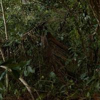Wait-A-While: Jessica Sladek Opening Reception