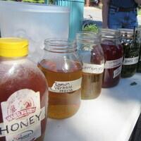 Garden Commons Workshop: Herbs & Tea-Making