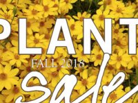 Fall FRIENDS of the Garden Plant Sale