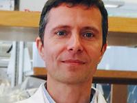 Dr. Lukasz Kozubowski, Clemson University