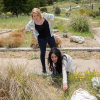 Arboretum Phenology Workshops