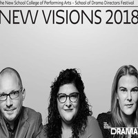 New Visions Festival PREVIEW: Roberto Zucco, by Bernard-Marie Koltès, directed by Joseph Rizzolo