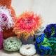 Crochet Coral Reef Workshop
