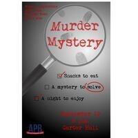 APB Murder Mystery