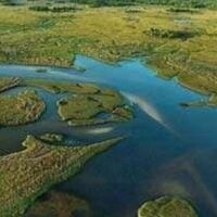 Using paleoecological data to aid in setting restoration goals