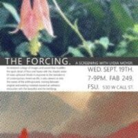 The Forcing