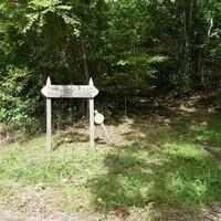 Warrior Trail Hike