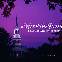 Wake the Forest Game Night