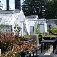 Jean Langenheim Greenhouse Dedication