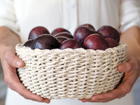 Twined Rope Bowl Workshop & Book Signing: Anne Weil of Flax & Twine