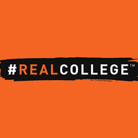 #RealCollege Student Experience Survey