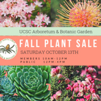 Fall Plant Sale at UCSC Arboretum & Botanic Garden