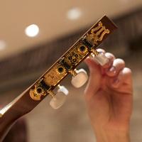 Chicago Guitar Evaluated Recital