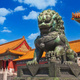 Alumni Association Trip: Imperial Beijing and the Exotic Giant Pandas
