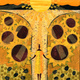Roxbury Sunflower Wisdom Festival with sparc! the ArtMobile