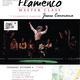 Flamenco Master Class