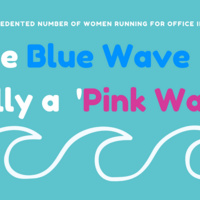Is the Blue Wave Really a 'Pink Wave'?