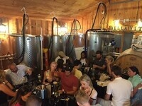 Winemaker for a Day: VIP Blending Class