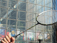 Rochester Open: Badminton Tournament