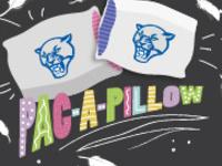 ALP PAC-A-Pillow