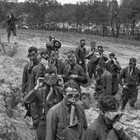 Bringing the War Home: World War I Through The Stereoscope