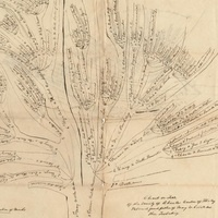 Intermediate Genealogy Workshop: How to Trace your Virginia Roots