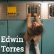 Edwin Torres: BRAINLINGO
