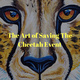 The Art of Saving the Cheetah - Paint and Sip Public Fundraiser